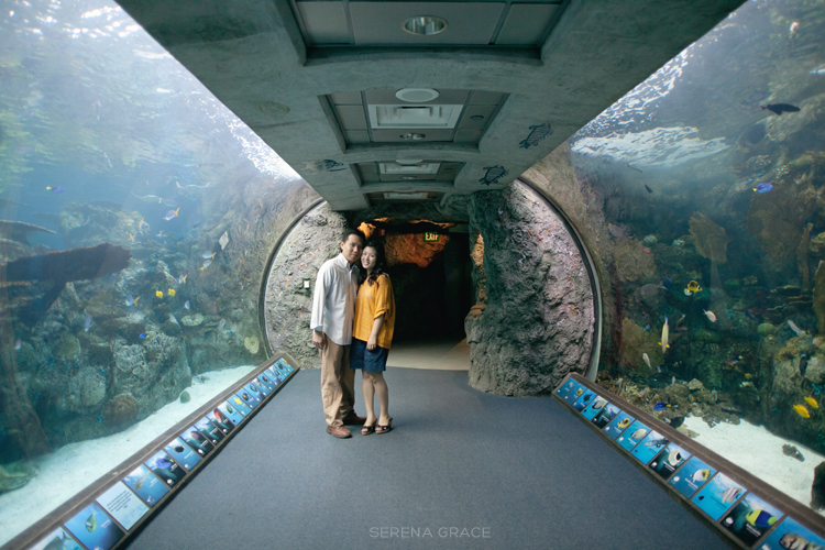Winnie Nelson Long Beach Aquarium Engagement Serena