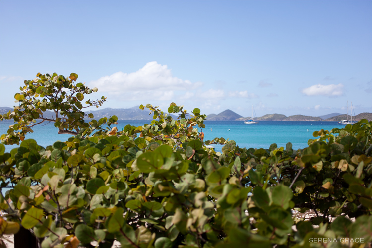 US-Virgin-Islands-30