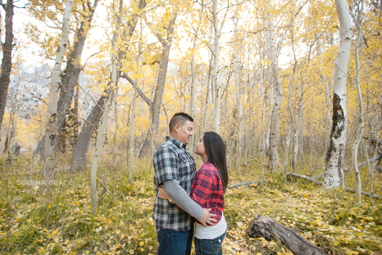 Convict_Lake_engagement_01
