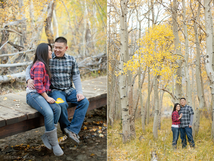 Convict_Lake_engagement_06