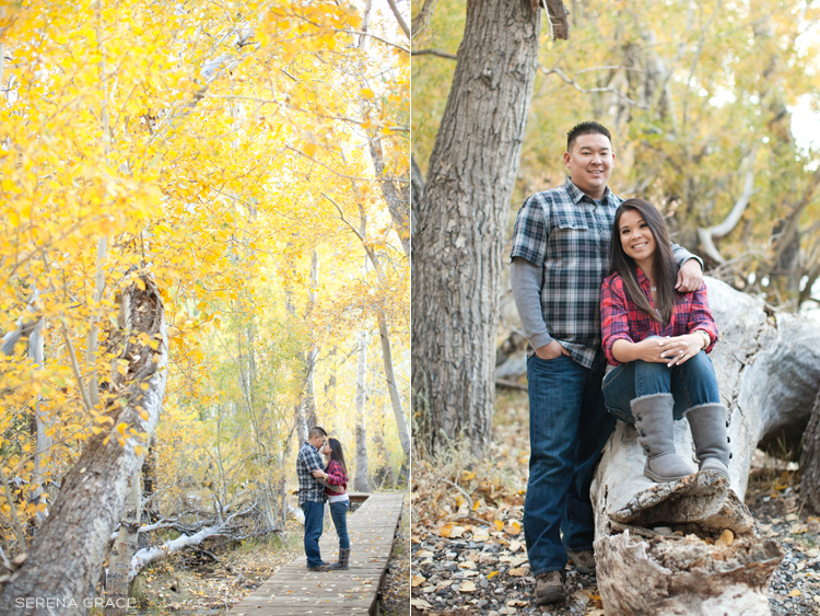 Convict_Lake_engagement_08