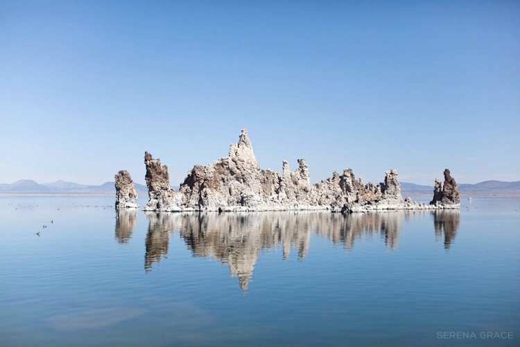 Mono_Lake_engagement_13