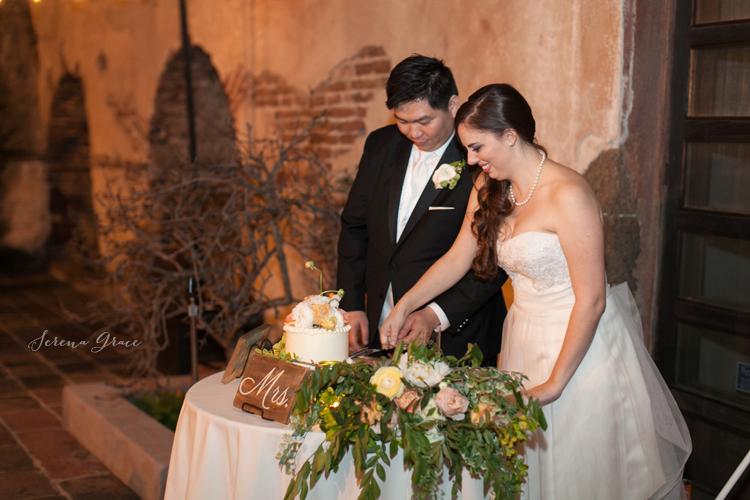Ashley_Baldwin_wedding_51